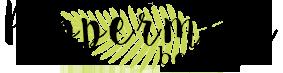 Peppermint Beauty blog beauté bio et cosmétique maison